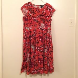 Midnight Velvet Dress plus size